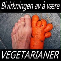 Vegetar